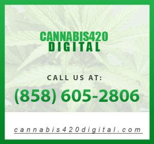 Marijuana Dispensary Marketing: How to Stand out From the Competition